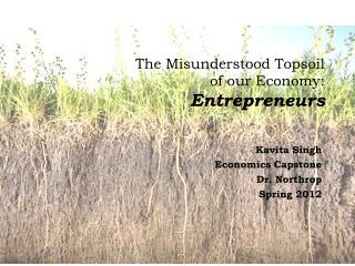 The Misunderstood Topsoil  of  our  Economy:  Entrepreneurs
