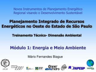 Novos Instrumentos de Planejamento Energ�tico Regional visando o Desenvolvimento Sustent�vel