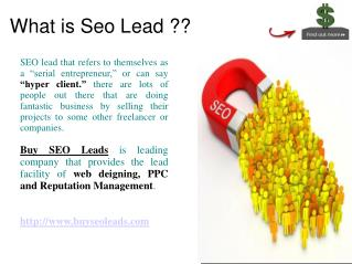 Buy Seo Leads