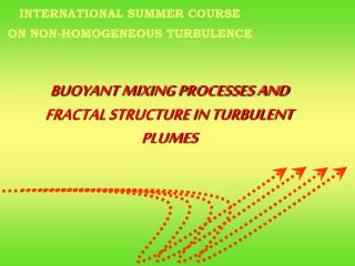 BUOYANT MIXING PROCESSES AND FRACTAL STRUCTURE IN TURBULENT PLUMES