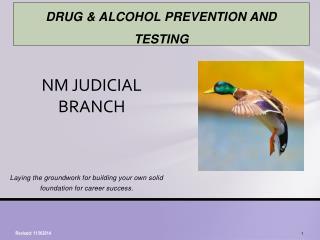 NM JUDICIAL BRANCH