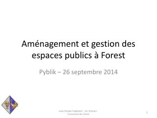 Aménagement et gestion des espaces publics à Forest