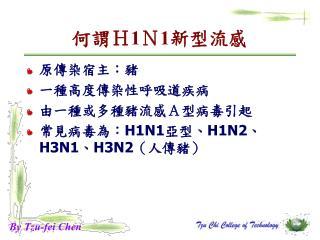 何謂 H 1 N 1 新型流感