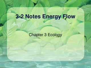 3-2 Notes Energy Flow