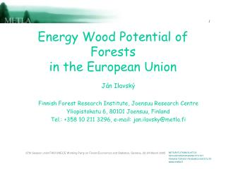 Energy Wood Potential of Forests in the European Union