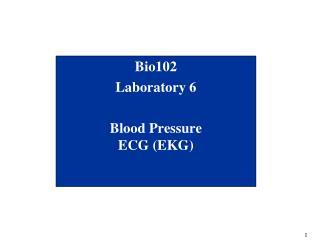Bio102 Laboratory 6 Blood Pressure ECG (EKG)