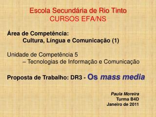 Escola Secundária de Rio Tinto CURSOS EFA/NS