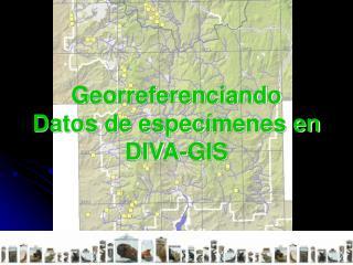 Georreferenciando  Datos de espec menes en   DIVA-GIS