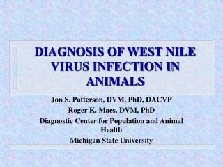 DIAGNOSIS OF WEST NILE VIRUS INFECTION IN ANIMALS