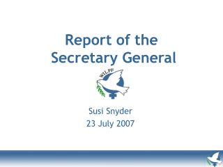 Report of the  Secretary General