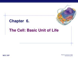 Chapter  6. The Cell: Basic Unit of Life