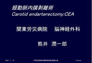 頚 動脈内膜剥離術 Carotid endarterectomy:CEA