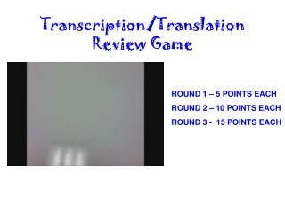 Transcription/Translation             Review Game