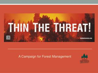 A Campaign for Forest Management