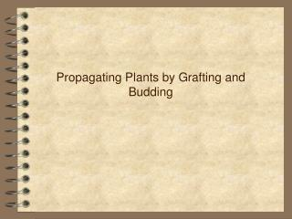 Propagating Plants by Grafting and Budding