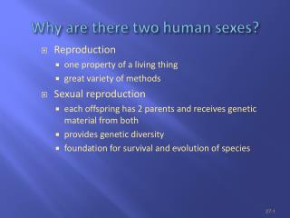 Why are there two human sexes?
