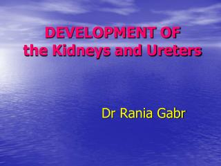 DEVELOPMENT OF the Kidneys and Ureters