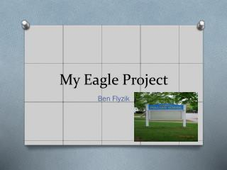 My Eagle Project