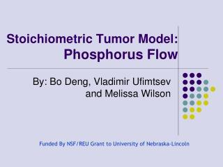 Stoichiometric Tumor Model: Phosphorus Flow