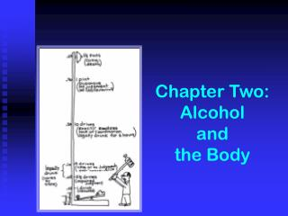 Chapter Two:  Alcohol  and  the Body