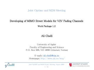 Joint Optimo and M2M Meeting Developing of MIMO Street Models for V2V Fading Channels