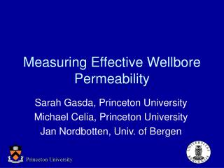 Measuring Effective Wellbore Permeability