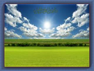 PCO دکتر وحید یزدی پاییز 1392