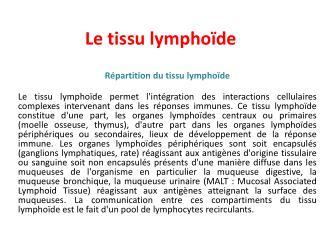 Le tissu lymphoïde