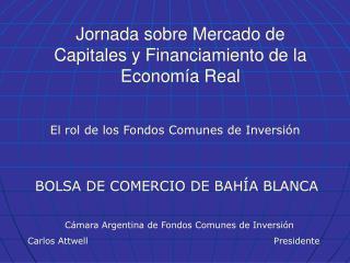 Jornada sobre Mercado de Capitales y Financiamiento de la Economía Real