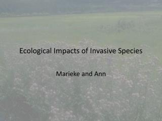 Ecological Impacts of Invasive Species