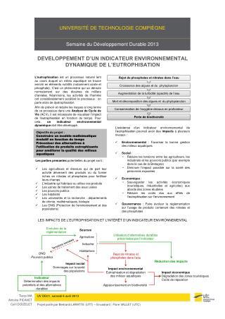 DEVELOPPEMENT D'UN INDICATEUR ENVIRONNEMENTAL DYNAMIQUE DE L'EUTROPHISATION