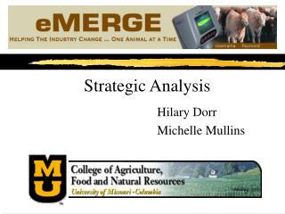Strategic Analysis