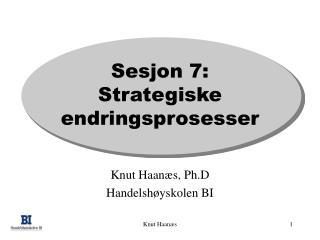 Sesjon 7: Strategiske endringsprosesser