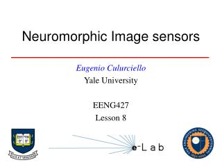Neuromorphic Image sensors