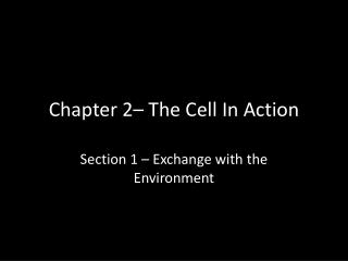 Chapter 2– The Cell In Action