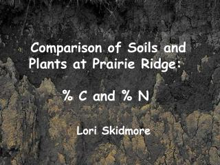 Comparison of Soils and Plants at Prairie Ridge: % C and % N