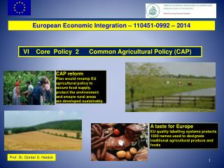 European Economic Integration � 110451-0992 � 2014