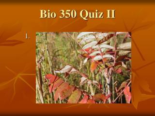Bio 350 Quiz II