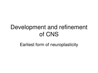 Development and refinement of CNS