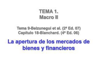 TEMA 1.  Macro II Tema 9-Belzunegui et al. (2ª Ed. 07) Capítulo 18-Blanchard. (4ª Ed. 06)