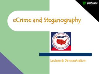 eCrime and Steganography