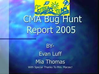 CMA Bug Hunt Report 2005