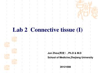 Lab 2  Connective tissue (I)