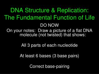 DNA Structure & Replication: The Fundamental Function of Life
