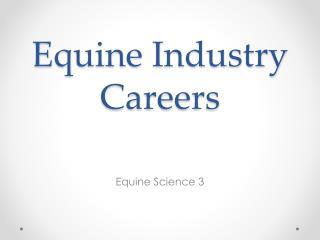 Equine Industry Careers