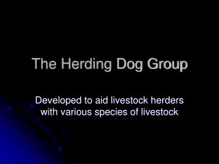 The Herding Dog Group