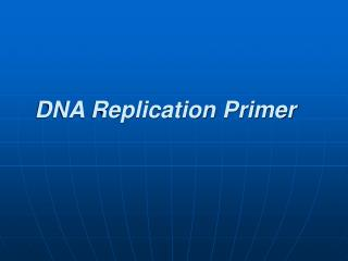 DNA Replication Primer