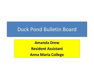 Duck Pond Bulletin Board