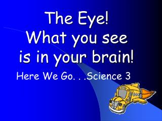 The Eye! What you see is in your brain!