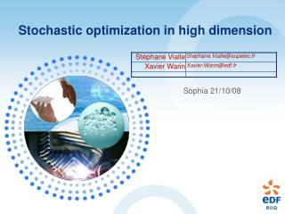 Stochastic optimization in high dimension
